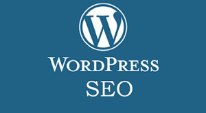 Wordpress-SEO-Training-Swansea